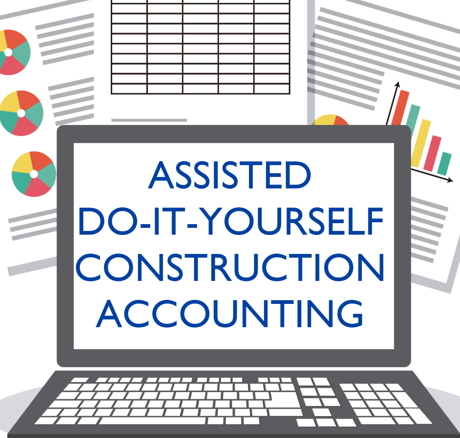 Assisted Do-It-Yourself Accounting