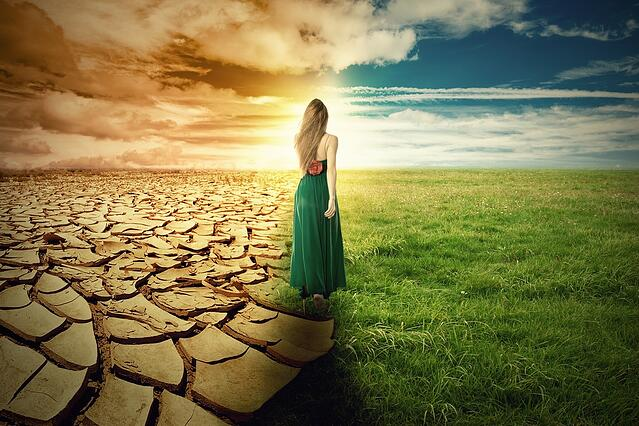 A Climate Change Concept Image. Landscape of a green grass and extreme dry drought land.jpeg